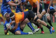 Súper Rugby: el concordiense Marcos Kremer volverá a la titularidad en Jaguares