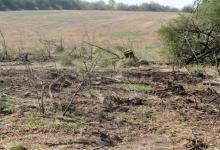 El desmonte se produjo en inmediaciones de la Ruta 9 que conduce a Villa Urquiza.