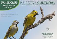 Fotografías fauna entrerriana
