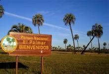 Los destinos de naturaleza serán clave en un escenario pospandemia para reactivar al turismo y el movimiento económico.