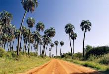 La Mancomunidad Tierras de Palmares elaborará para los próximos días un proyecto con la modalidad, protocolos y formas de control para reactivar el turismo en esa región.