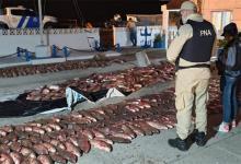En un procedimiento llevado adelante el jueves en horas nocturnas, personal de Prefectura con asiento en Ibicuy, decomisó 3.000 kilogramos de pescado.