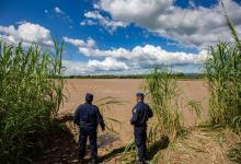 policías frontera Salta-Bolivia