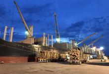 Un nuevo operador logístico y de exportaciones se incorporó al puerto de Concepción del Uruguay, por lo que se sumarán nuevos embarques desde esta terminal.