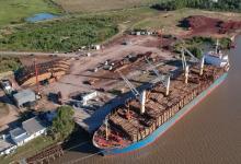 El Puerto de Ibicuy realizó embarques por casi 200 mil toneladas en 2020