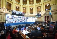 """Aval del Senado a la """"Ley Yolanda"""", de capacitación obligatoria en materia ambiental"""