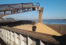 exportación de soja