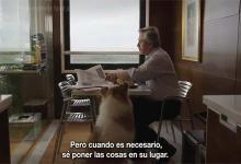 El primer spot de Alberto Fernández, con Cristina y su perro Dylan como protagonistas