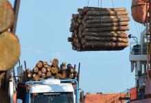 traslado de madera