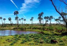 Los protocolos aprobados que regularán la temporada turística de verano en la Provincia estarán disponibles en www.entrerios.gob.ar/minpro y en www.entrerios.tur.ar.